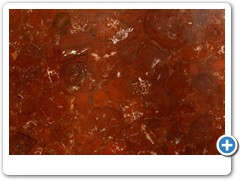 Petrified Wood-Red